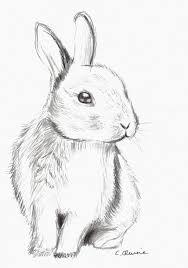 fluffy bunny by christina 0o deviantart com on deviantart girly