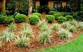 florida friendly landscaping practices uf ifas extension