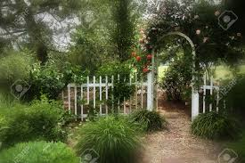 dreamy garden with picket fence and trellis with roses stock photo