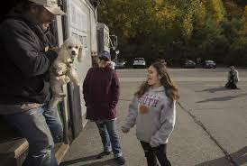 rescue operation brings thousands of dogs to new homes the
