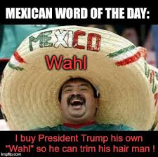 Meme Maker With Own Photo - mexico buys president trump his own wall imgflip