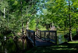 best hikes in orlando florida hikes