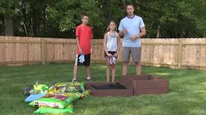 plant a back to vegetable garden this fall with the kids