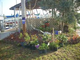 landscape project completed by phoenix academy students sarasota