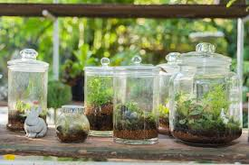 19 inspiring ideas for easy diy terrariums mnn mother nature