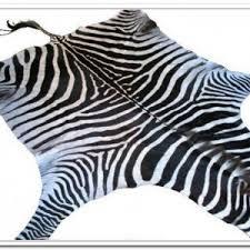 real zebra skin rug curtain curtain image gallery 5mrrqn0pxy
