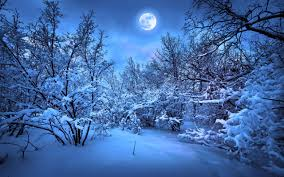 winter nature wallpapers nature wallpaper winter night wallpapers high quality resolution