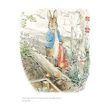 peter rabbit unframed limited edition print beatrix potter shop