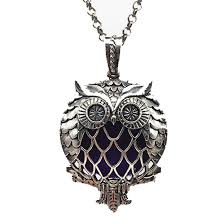 vintage owl necklace jewelry images Vintage owl essential oil diffuser necklace with magnet locket png
