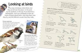 birds explore the world of our feathered friends dk