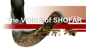 purchase shofar the voice of shofar treller
