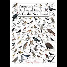 peterson u0027s backyard birds of the pacific nw u2013 poster u2013 earth sky