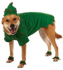 christmas elf dog costume costume craze