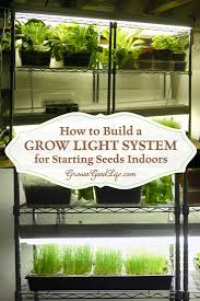 build a grow light system for starting seeds indoors grow lights