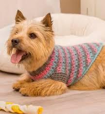 free crochet dog sweater patterns dog sweater pattern crochet