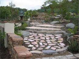 Backyard Ground Cover Ideas Groundcover Installation Landscaping Escondido Aj Criss Industries