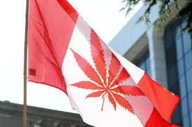 Colorado Flag Marijuana Why Would A Criminologist Support The Legalization Of Marijuana