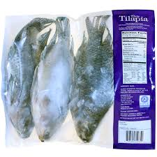 100 tilapia farming guide polyculture of nile tilapia and