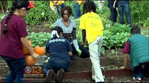 first lady michelle obama plants vegetable garden with students