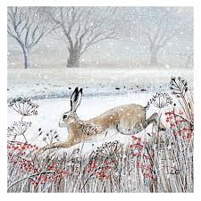 buy museums and galleries leaping hare charity christmas cards