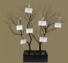 wishing tree manzanita wish tree kit shipping included blooms branches