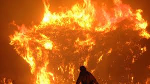 California Wildfires Global Warming by Climate Change Expected To Fuel Larger Forest Fires U2014 If It Hasn U0027t