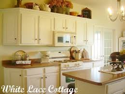 Painted Kitchen Cabinets White 21 Best Painted Kitchen Cabinets Images On Pinterest Kitchen