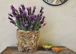 Unusual Home Decor Accessories 30 Unusual Vases To Inspire Creative Craft Ideas And Add Character