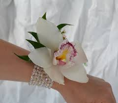 white orchid corsage single cymbidium orchid corsage danielson flowers