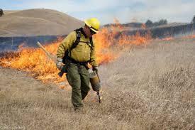 Wildfire Dc by Insurance U2013 Wildfire Today