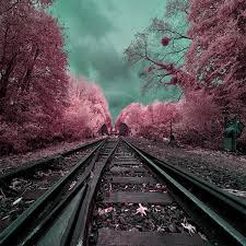 Landscape Photography Surreal Infrared Landscape Photography