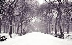 winter wallpapers reuun com