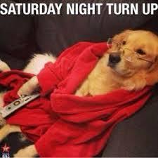It S Saturday Meme - saturday meme funny it s saturday pictures