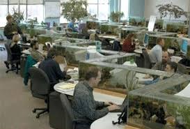 Zig Zag Reception Desk Desk Usb Desktop Aquarium Mini Fish Tank Glass Mini Fish Tank