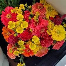 fresh cut flowers fresh cut flower drop bouquet subscription the gardener s