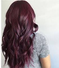 brown plum hair color the 25 best plum brown hair ideas on pinterest dark plum brown