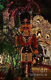 806 best light it up christmas light ideas for the museum images