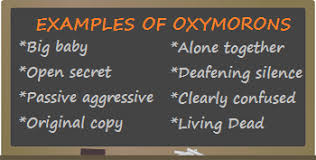 oxymoron lesson for kids definition u0026 examples video u0026 lesson