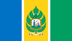 St Kitts Flag Saint Vincent And The Grenadines 1979 1985 Central American