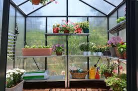Palram Harmony 6 X 8 Palram Glory 8 X 8 10mm Twinwall Glazing Canada Greenhouse Kits