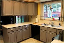 Rta Kitchen Cabinets Los Angeles Premade Kitchen Cabinets Los Angeles Tehranway Decoration