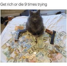 Rich Cat Meme - 25 best memes about grumpy cat grumpy cat memes