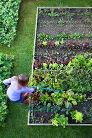 how to do raised bed vegetable gardens lovetoknow