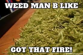 Best Weed Memes - weed man b like got that fire weed memes