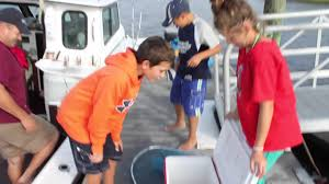 blue crabbing on cape cod youtube