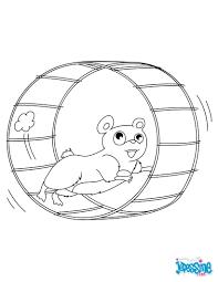 Coloriages hamster dans sa roue  frhellokidscom