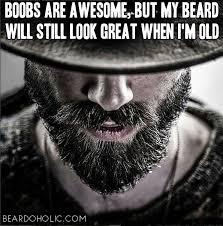Beard Meme - best beard memes and quotes beardoholic