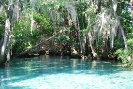 Crystal River Florida Map Three Sisters Springs Crystal River Fl Favorite Places