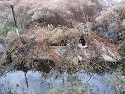 Duck Blind Images How To Build A Duck Blind Diy Guide And Expert S Advice
