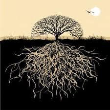 symbolism trees tree symbolism google images celtic tree and tattoo